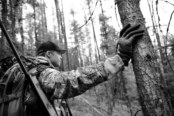 Bear, Bear hunting, Montana, HSM Ammo, Timber, Sitka Gear, Rifle Hunting, Hunting ammo, Rifles, guns